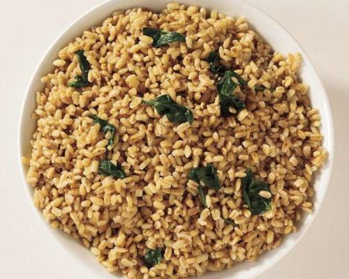 Hamilton Beach Rice 10 in 20
