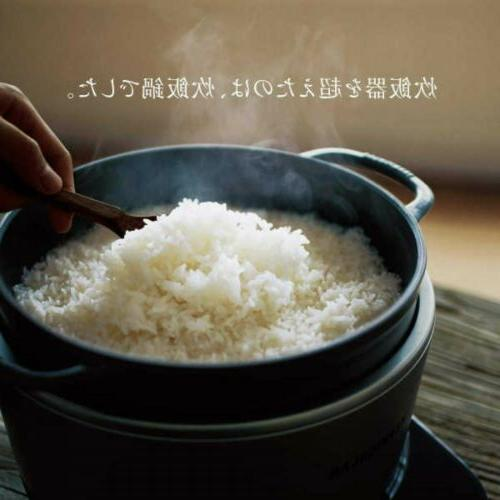 Vermicular RP23A-WH Style Rice Multipurpose Japan